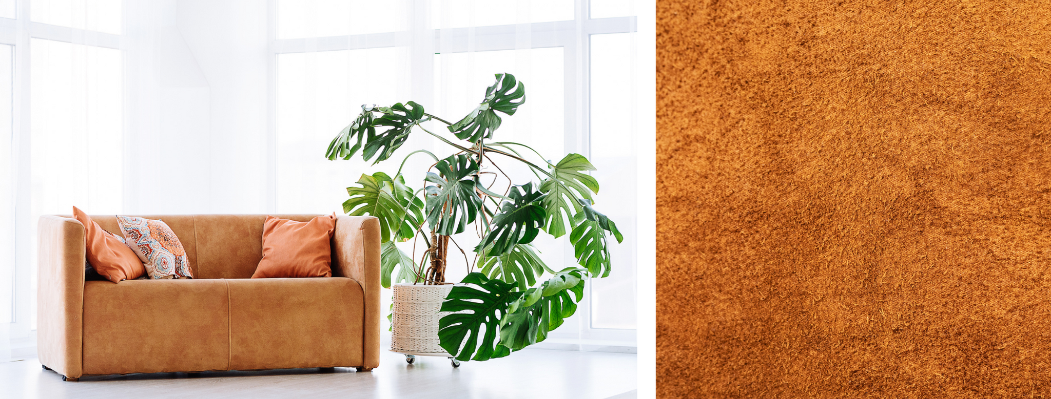 Caring for Suede Furniture