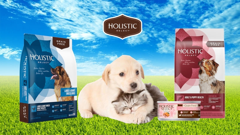 Discover Holistic Select, Dog Food & Cat Food