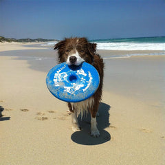 Aussie Dog Fly It Disc Blue, Floats on Water