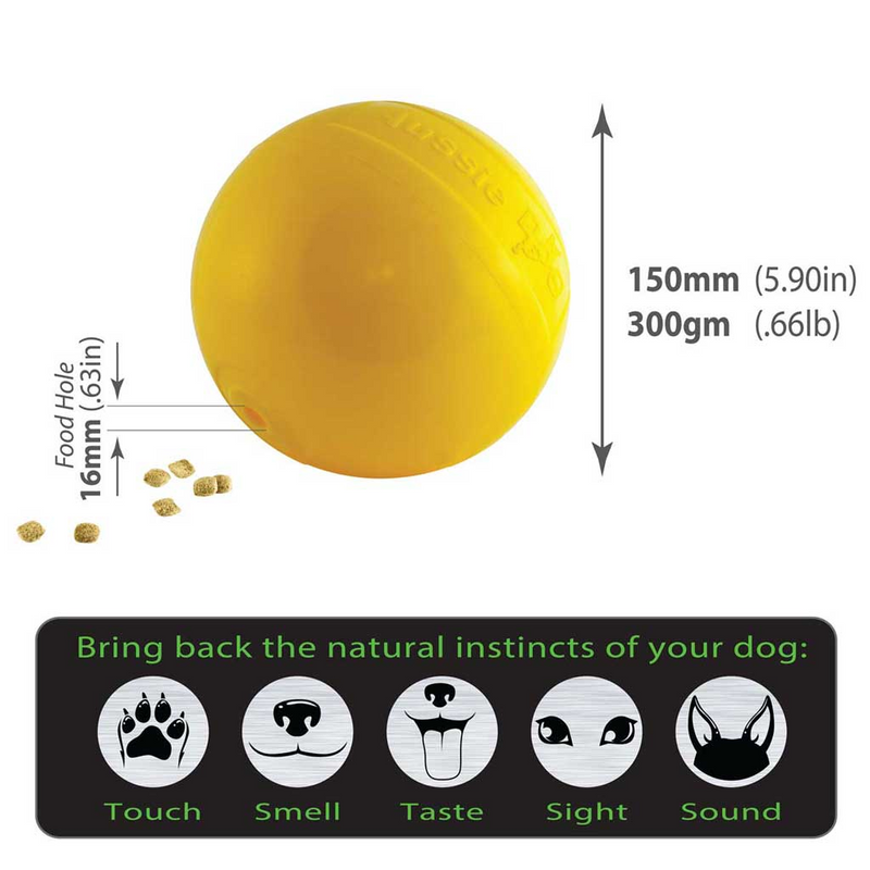 Aussie Dog Tucker Ball Medium, Rotates & Dispenses