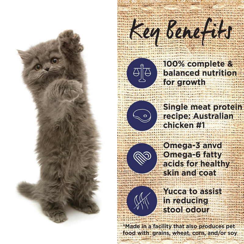 Ivory Coat Chicken with Coconut Oil Dry Kitten Food - Key Benefits.