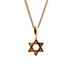 Parvus Star of David Necklace