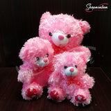 Cute Pink Teddy