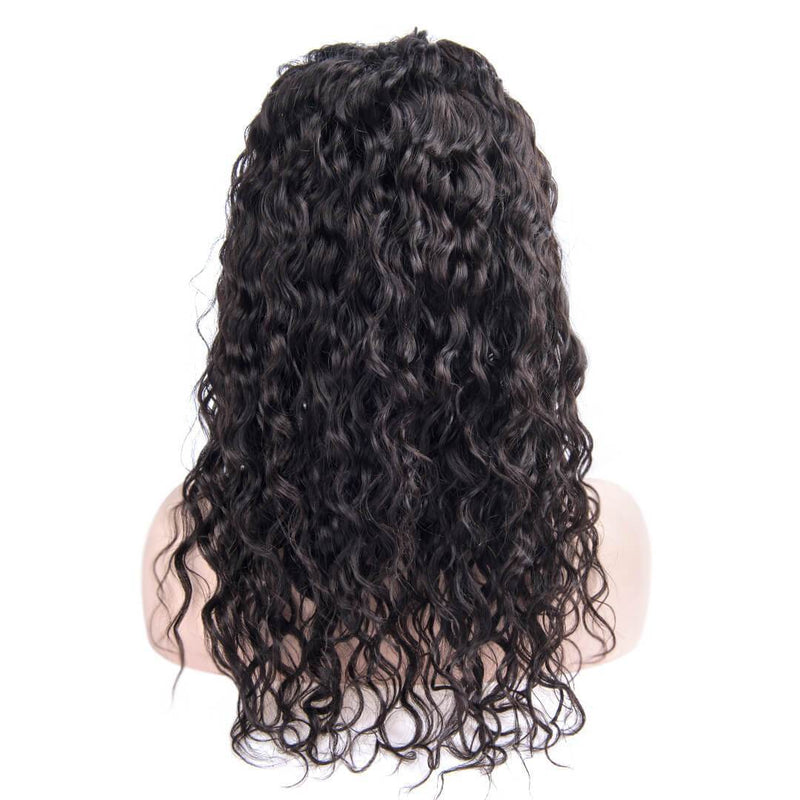 Pre Plucked Natural Wave Human Hair Lace Front Wig back