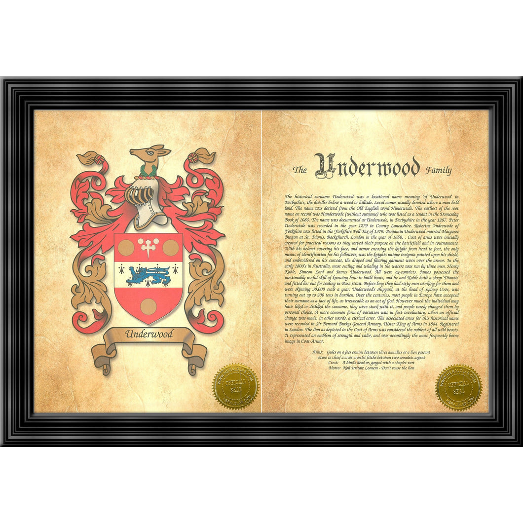 Executive Family Name History and Coat of Arms (2 pages) size 17
