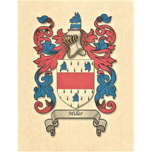 "Authentic Family Coat of Arms full color - Size:  11"" x 8.5""   CM 21.5 x 28"