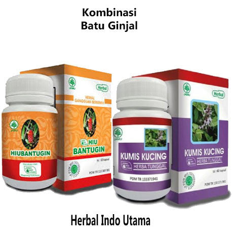 Herbal Kombinasi Ginjal