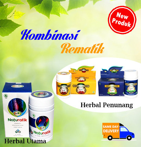 Herbal Kombinasi Penyakit Rematik Naturafit