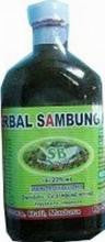 Madu Herbal Sambung Nyowo