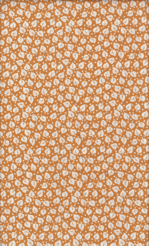 Andover Darling Clementine 9480-O