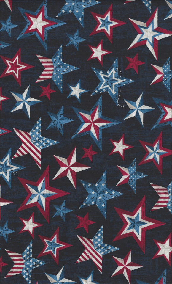 Timeless Treasures Timeless Patriotic c5279-ink