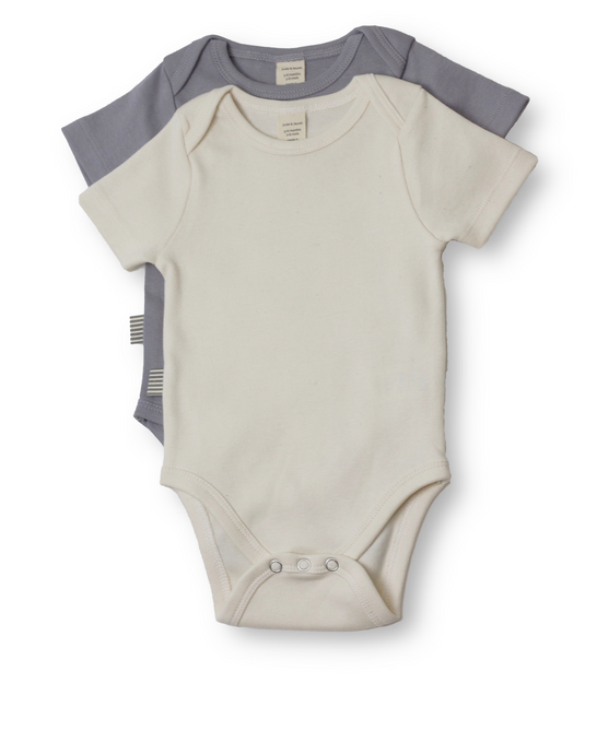 Fave Short Sleeve Onesie Gift Set ~ Natural and Sleet