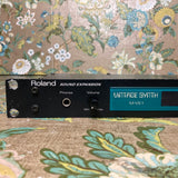 Roland Vintage Synth Sound Expansion M-VS1