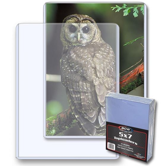 BCW 5x7 Toploaders (25pk) | Eastridge Sports Cards