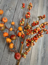 Load image into Gallery viewer, Set of 3 Harvest Crabapple Berry Picks