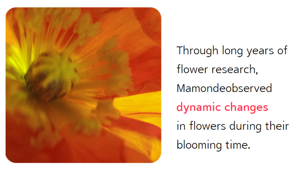 ingredients of mamonde red energy recovery serum