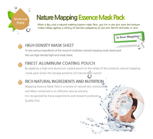 Best of Ja Yeon Mapping Essence Mask