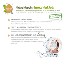 Load image into Gallery viewer, Ja Yeon Mapping Aloe Essence Mask - 5 Sheets, Sheet Mask, K-Beauty Blossom, [variant_title]