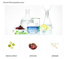 Load image into Gallery viewer, Ingredients of laneige water bank moisture ex | K-Beauty Blossom USA