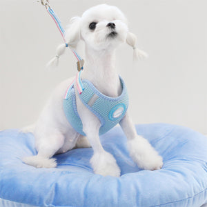 Soft Mesh Harness & Leash Set (Sky Blue)