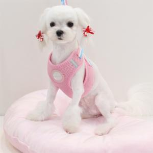 Soft Mesh Harness & Leash Set (Pink)