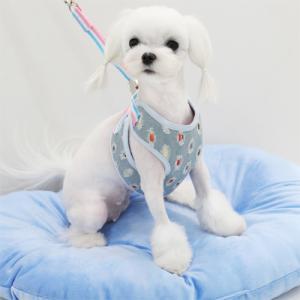 Light Denim Harness & Leash Set