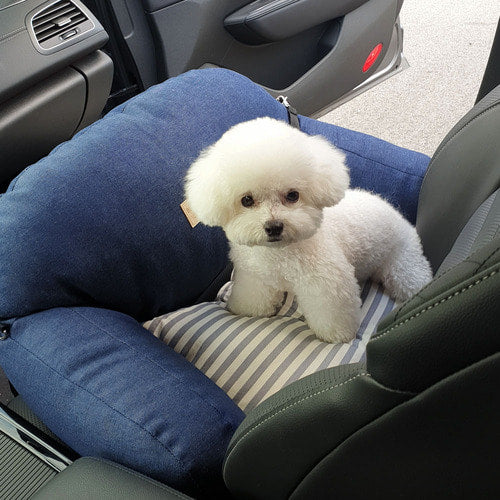 Denim Pet Carseat with Safety Belt