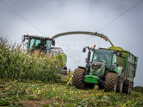 Print of a Jaguar Fendt Maize Silage Available In Gloss|Sepia|Acrylic