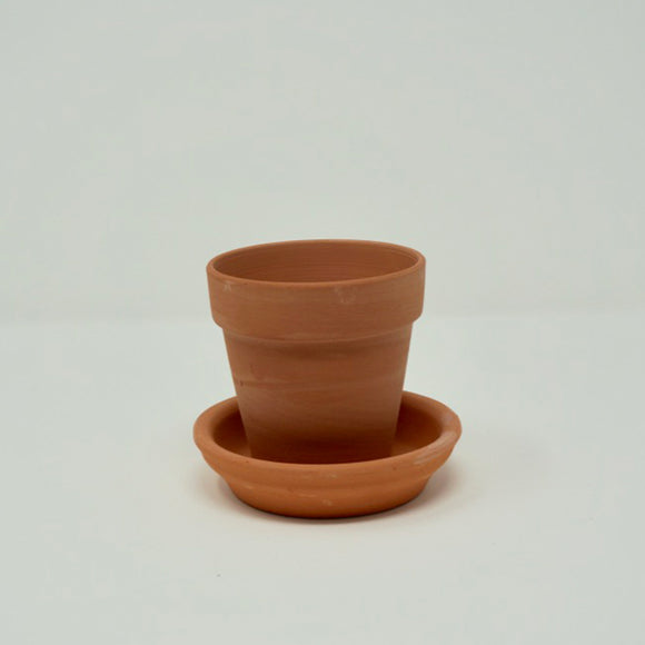 3 in. Terracotta Planter