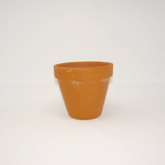 6 in. Terracotta Pot