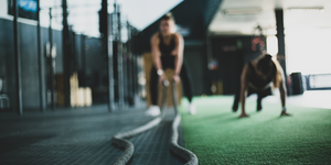 4 of FitTrack's Must Know Training Rules