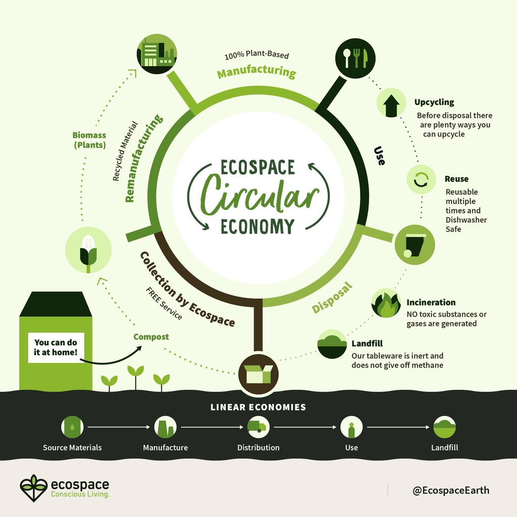 Closing the Loop: A Circular Economy, And How You Can Join!