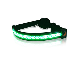 Green LED Band