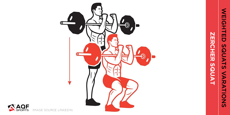 zercher-squat-illustration