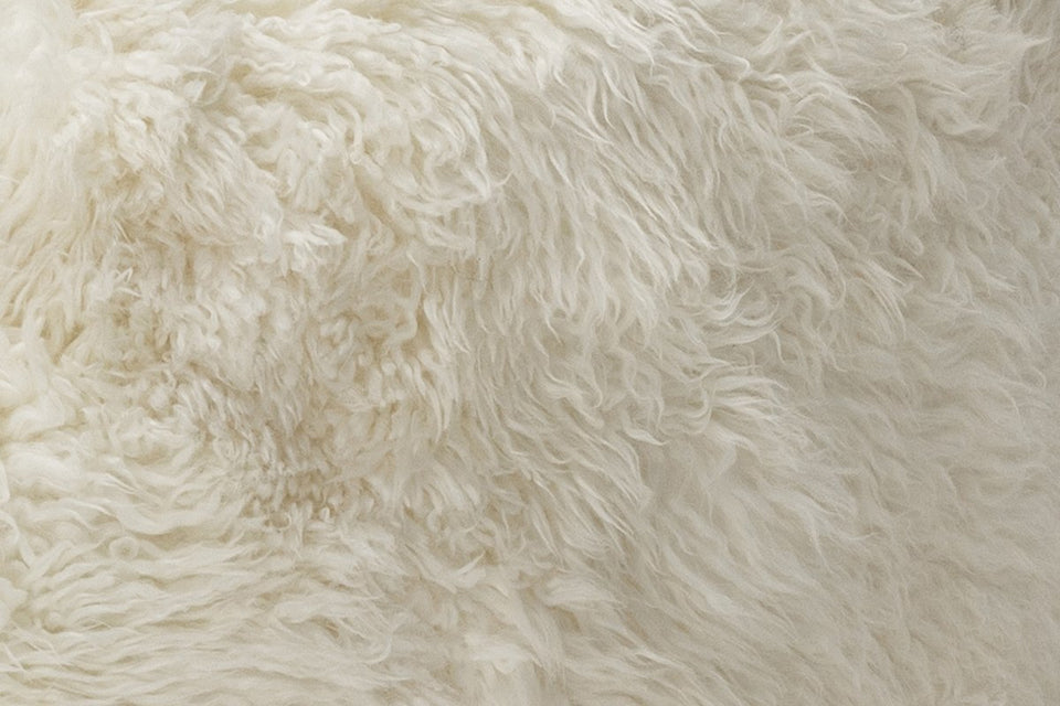 Closeup of white sheepskin rug