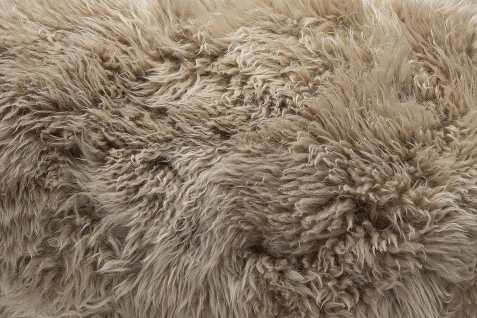 Closeup of long wool sheepskin