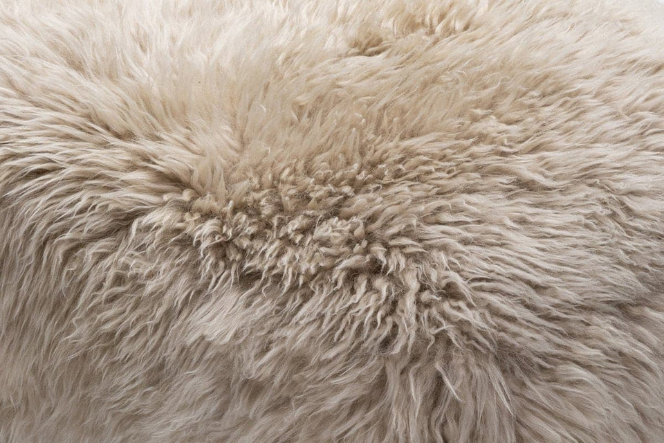 Natural sheepskin closeup