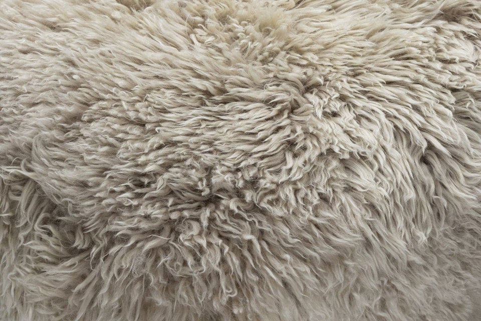 neutral sheepskin closeup