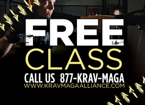 trial pass back krav maga 4c