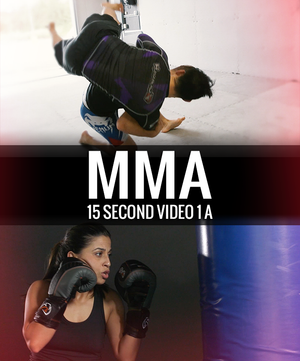 Mixed Martial Arts Video 15 Second 1 a - Dojo Muscle