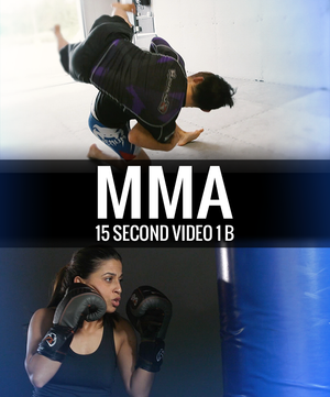 Mixed Martial Arts Video 15 Second 1 b - Dojo Muscle