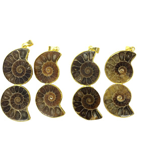 Ammonite couple Pendant 25X50mm
