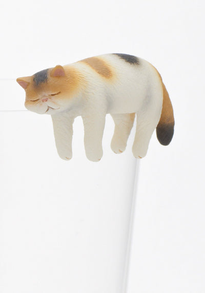 Exotic Shorthair Blind Box - Kutame