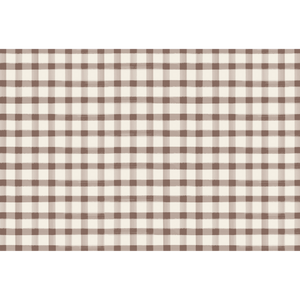 Brown Painted Check Paper Placemats