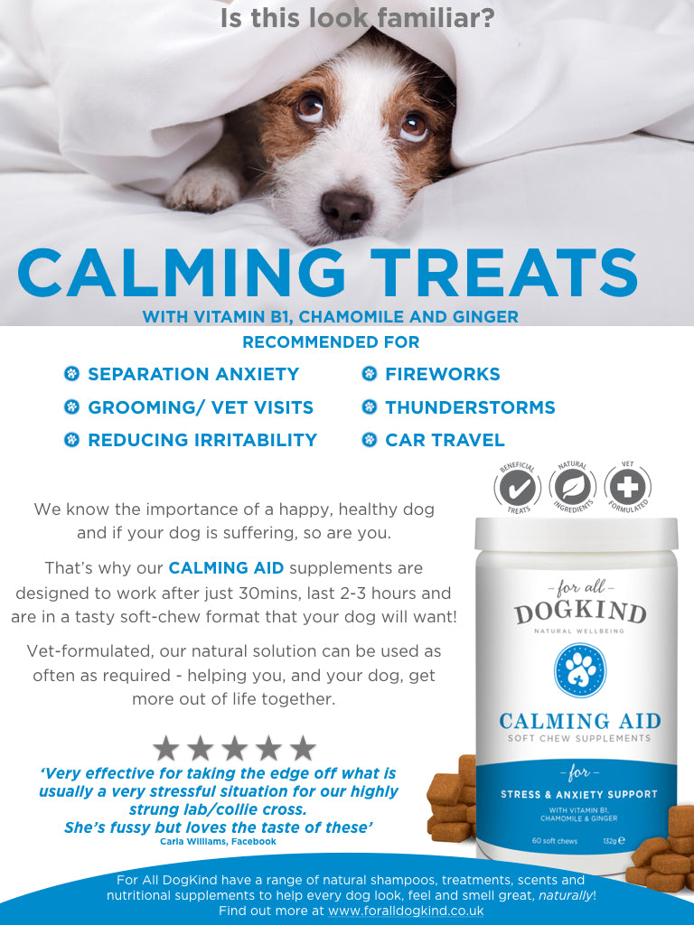 Calming Aid Soft Chew Supplements For All Dogkind
