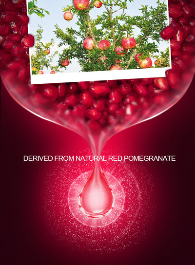 Pomegranate Face Cream  - Skin Care | MegaMallExpress.com