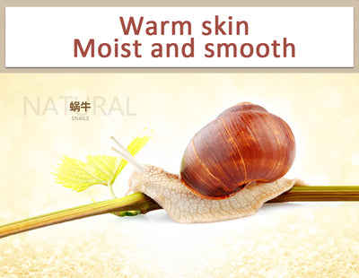 Snail Face Skin Care Set  - Skin Care | MegaMallExpress.com