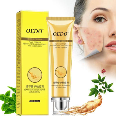 Ginseng Extract Face Care  - Skin Care | MegaMallExpress.com