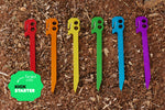 Endeavor Stake Rainbow Kit