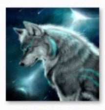 40 x 40 full square drill diamond painting -TLS-6449 wolf